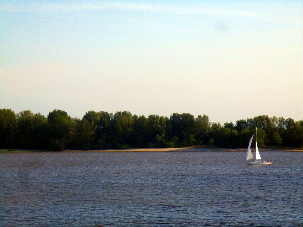 Ein Segelschiff auf der blauen Elbe, vor der Elbinsel Hanskalbsand.