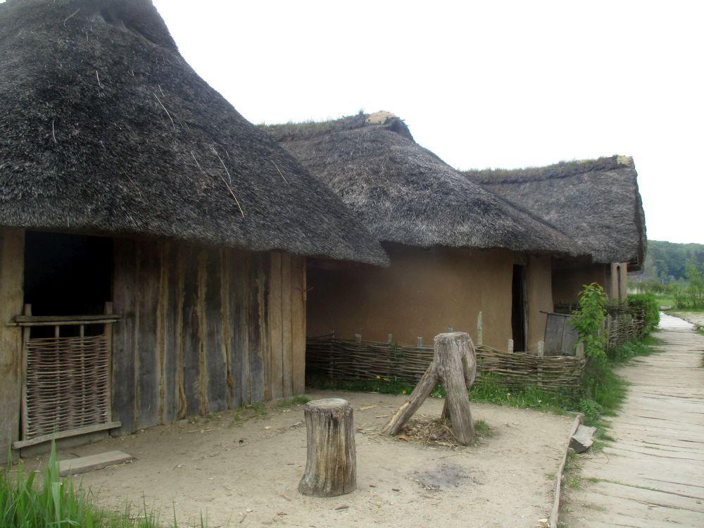 Die Wikingersiedlung Haithabu in der Rekonstrucktion. Nachgebaute Häiser aus verschiedener Bauweise bei denen Holz und Erde verwendet wurden. Im Vordergrund ist ein Haus mit einer Wand aus Spaltbohlen zu sehen. Das Haus daneben hat einen Lehmverputz. Beide Gebäude sind mit Schilf gedeckt.