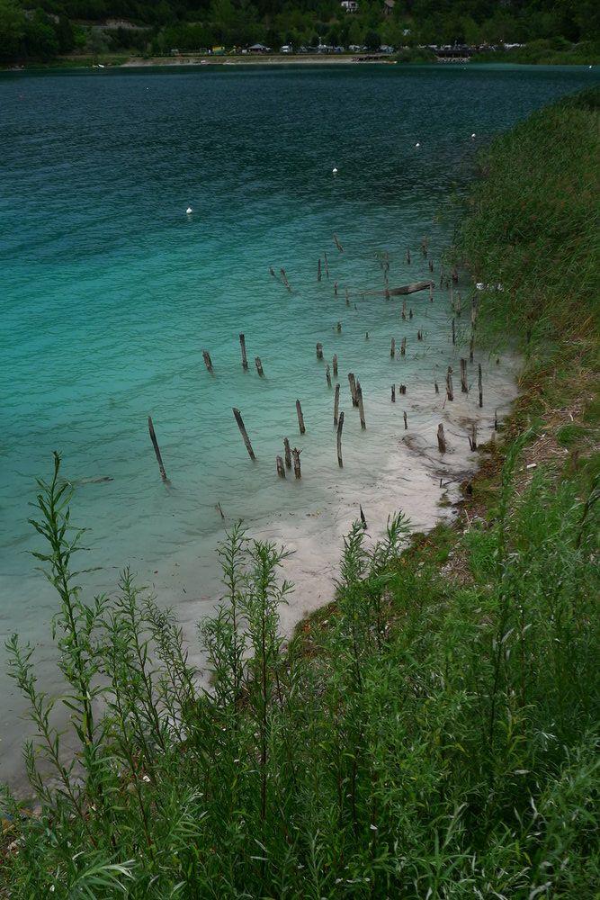 Holzpfähle schauen wie Zahnstocher aus dem Gelben Wasser des Alpensees