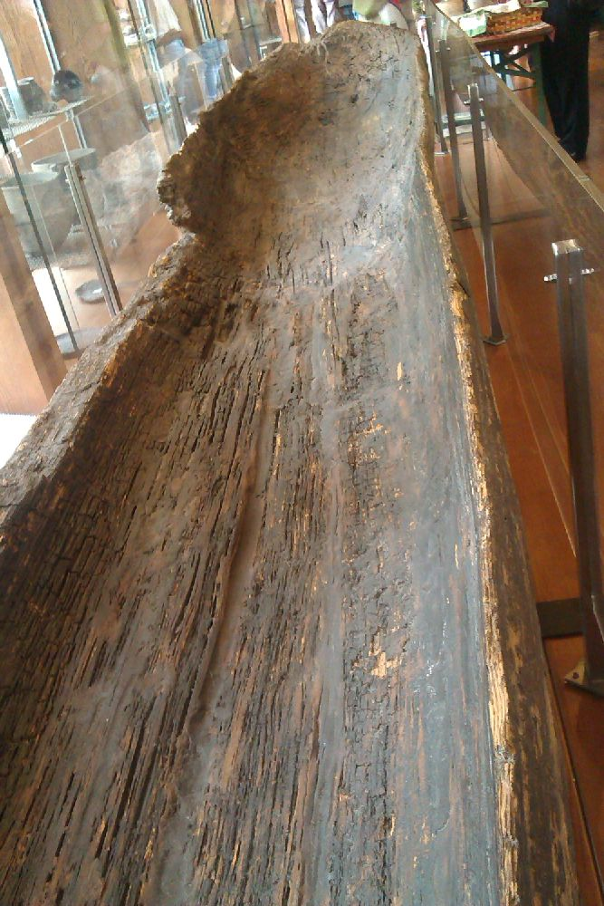 Ein Einbaum aus Holz. Er ist konserviert und ausgestellt. zu sehen ist er von der Innenseite aus.