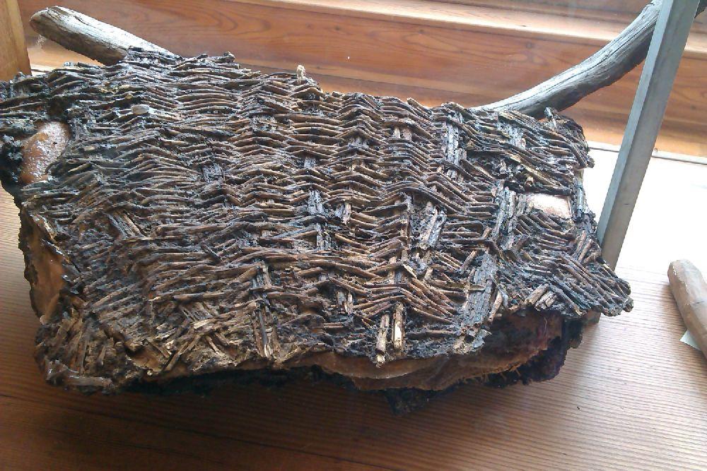 Ein Rest eines Korbgeflechtes aus der Bronzezeit. Es sieht genauso aus wie ein heute geflochtener Korb.