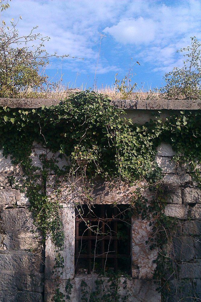 Ein übrwachsenes Gebäude aus grauem Stein. Es ist ein Fenster zu sehen mit einem Gitter.