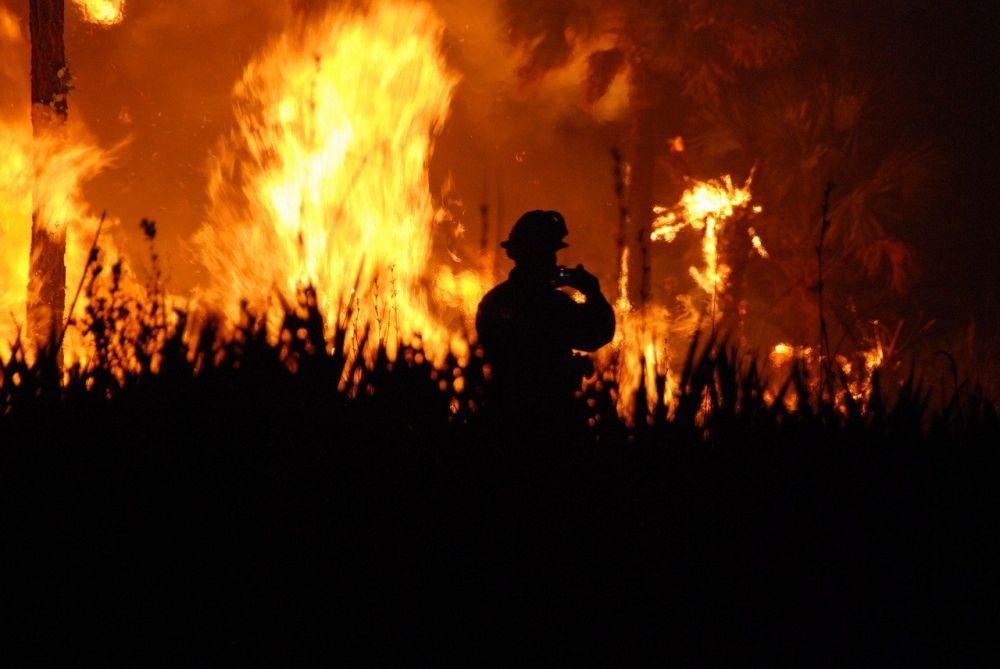 Ein Wald steht in Flammen, alles ist orange-rot. Im Vordergrund ist eine dunkle Landschaft zu sehen, und der Schatten eines Feuerwehrmannes.
