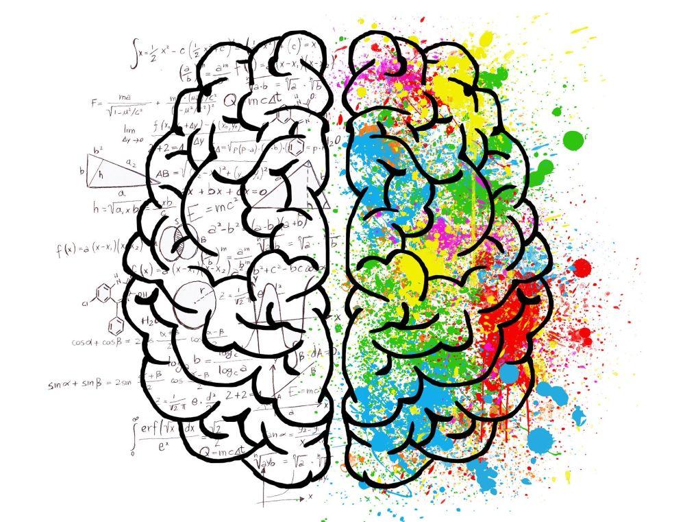 Artwork, ein Gehirn im Comicstil wird von oben gezeigt. Auf der linken Seite sind mathematische Formeln und andere naturwissenschaftliche Symbole in das Gehirn eingearbeitet, auf der rechten Seite ist das Gehirn bunt gefleckt dargestellt.