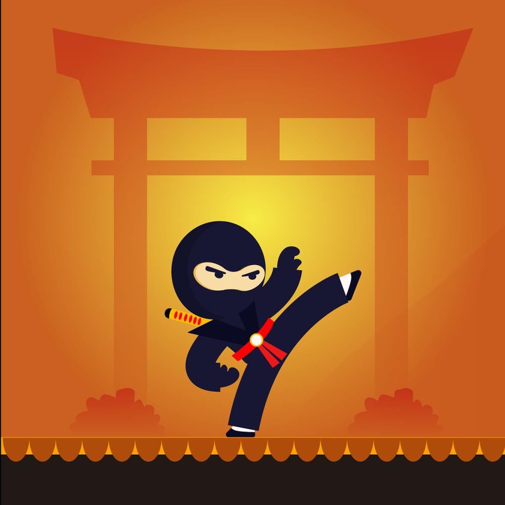 Comic: Ein schwarz gekleiderter Ninja macht einen Tritt in die Luft, Er hat ein Schwerz um den Körper gehängt, und trägt inen Roten gürtel. Im Hintergrund ist ein Asiatisches Tor zu erkennen, das ganz Orange in einem Sonnenauf oder untergang zu stehen scheint.