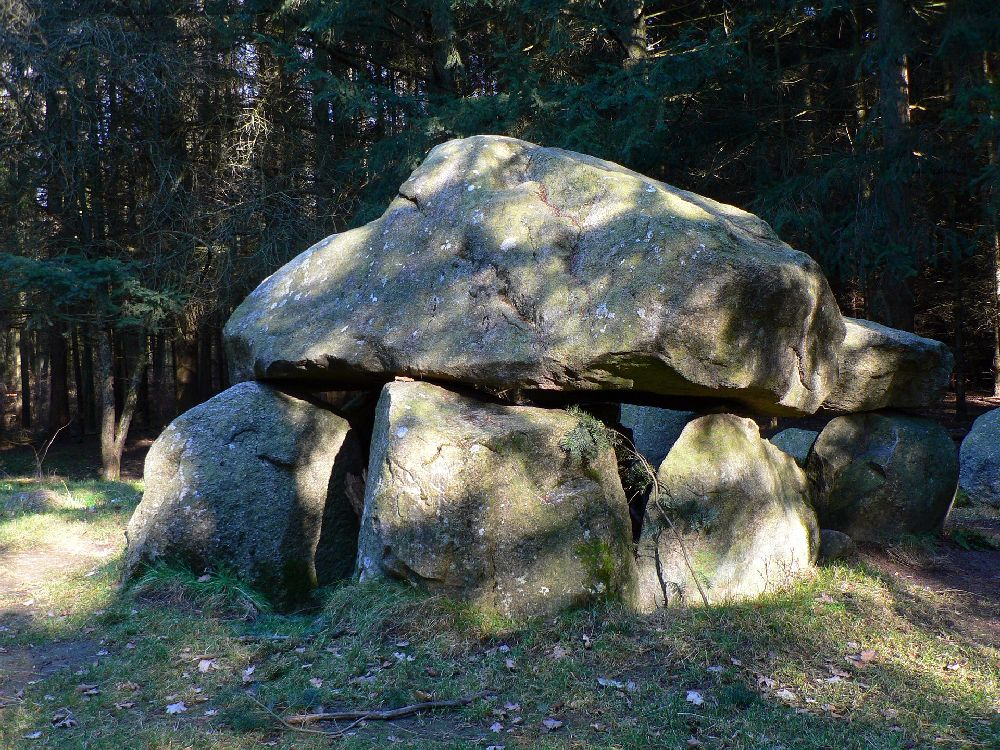 Ein Megalithgrab in einem Wald. Es handelt sich um mindesten fünf grpße graue Steine, die einen noch größeren grauen Stein wie ein Dach tragen.