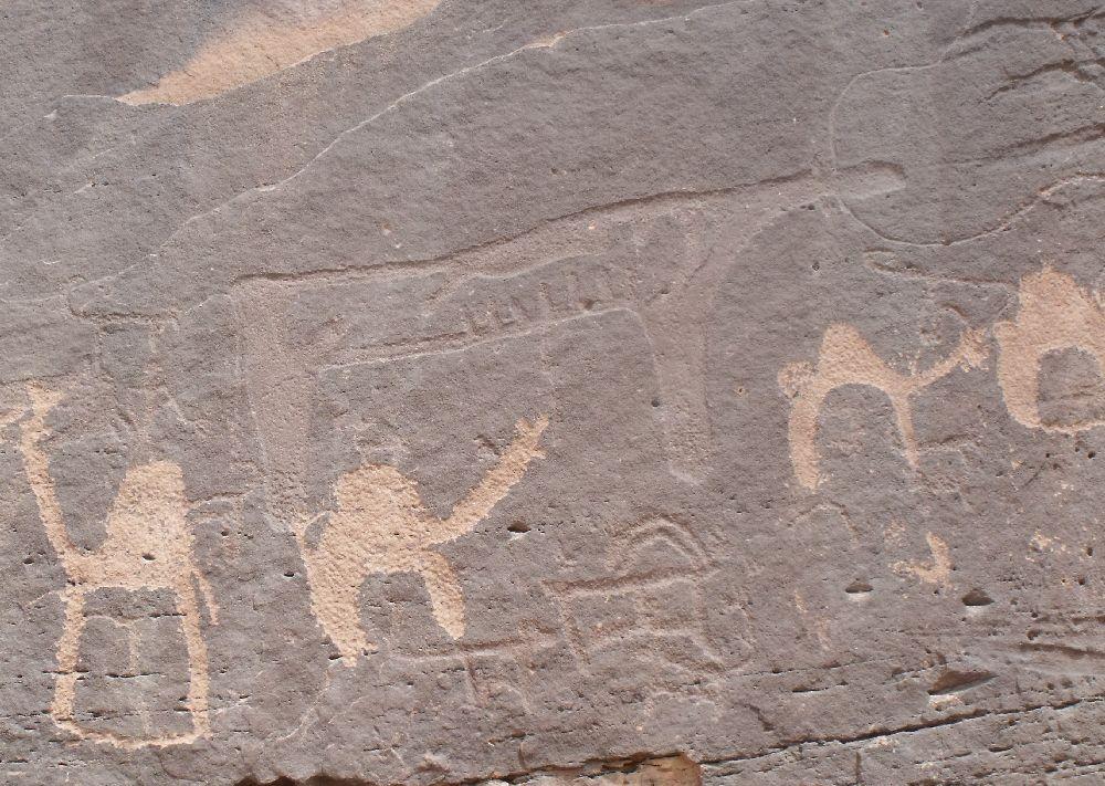 Felsritzung auf einem dunkelgrauen Stein. Die Jungsteinzeitlichen Felsbilder sind zum Teil orange ausgemalt. Sie zeigen Tiere: 4 Kamele, 2 Ziegen, Und ein großes Tier das nicht zuzuordenen ist. Es scheint sehr abgemagert zu sein.