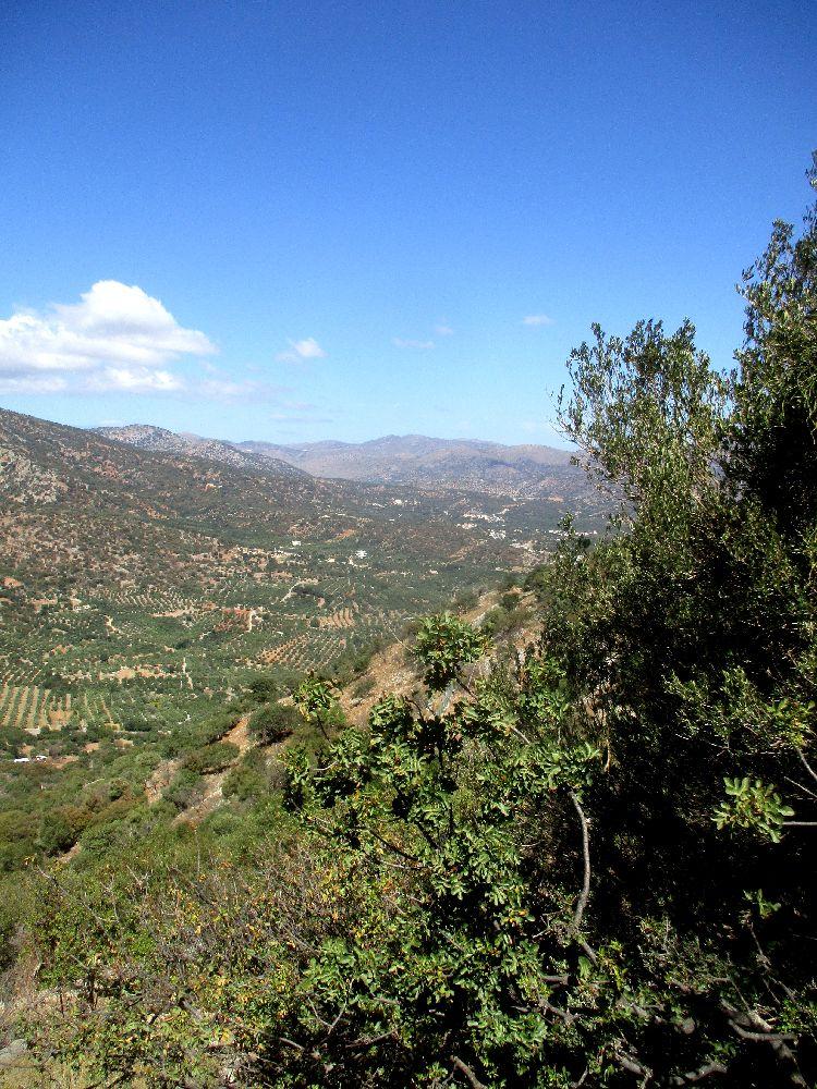 Eine vielfältiege grün bewachsene Berglandschaft.