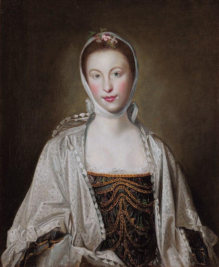 Ein Gemäld von Lady Hastings, Elizabth of Moria. Die Frau Trägt langes Braunes Haar in das ein weises Tuch gefochten ist, und ein beige Stola über einm Roten scheinbar samtenen Kleid. Di Frau aus dem 16. Jahrhundert hat ein sehr helle Haut und ein Ovalspitzes Gesicht, mit roten wangen und einer Hohen Strin. Sie ist sehr Jung, etwa anfang 20.
