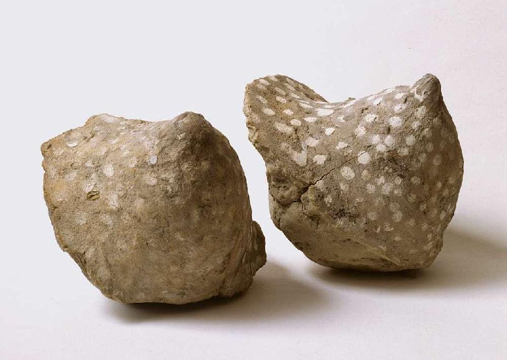Lehmbrüste die mit Punkten aus Kalk bemalt sind. Die Brüste stammen aus einem Archäologischen Fund eines Pfahlbaudorfes am Bodensee.