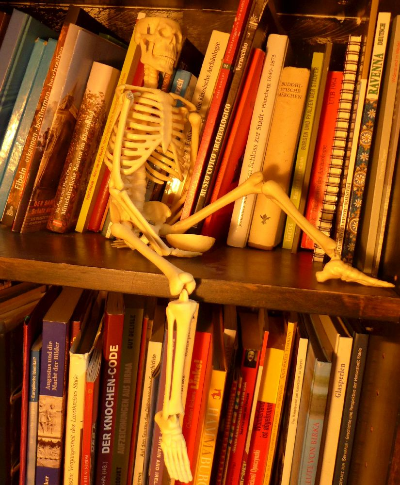 Ein Plastikskelett sitzt in einem Bücherregal vor ganz vielen Archäologiebüchern. Das Skelett hält eine Schädeldecke in der Hand.