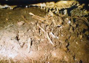 Ein Haufen Menschenknochen in einer Höhle. Die Knochen sind teils von Sedimant bedckt, es sieht aus wie ein durcheinander.