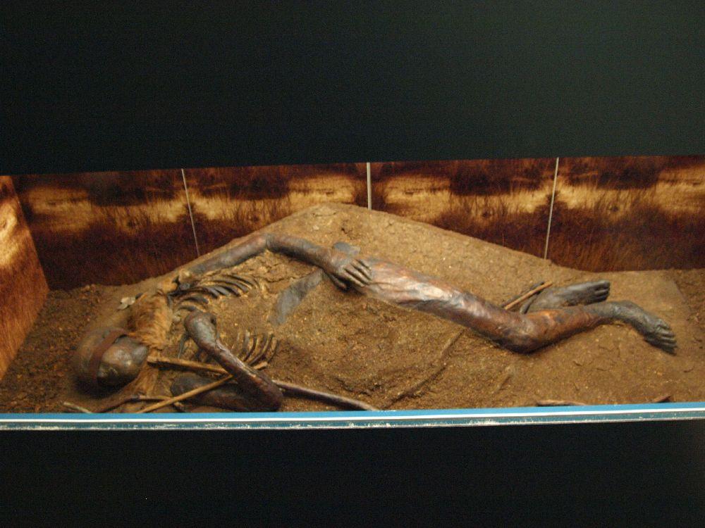Die Moorliche von Windby. Ein halb von Erdreich verdeckter Körper. Ein Arm und ein Bein sind zu sehen. Aussrdem sind bei dem Kopf die Augen verbunden.