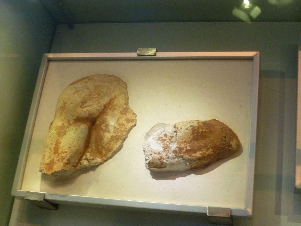 Zwei Originalbruchstücke des Lilienprinzen. Zu sehen ist eine Schulter mit starkm männlich wirkenden Muskelansatz, und ein stück unterarm, vielleicht mit Ellenbogen.