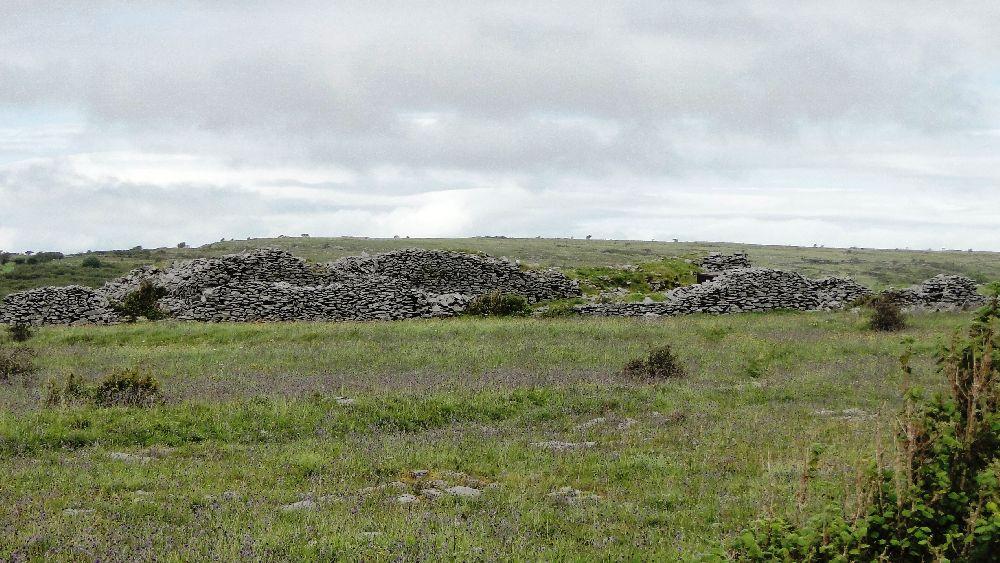 Zwei Mauerreihen von Cahercommaun aus der Distanz Fotografiert. Die Mauerreihen zeichenen sich deutlich in der grünen Wiese ab.