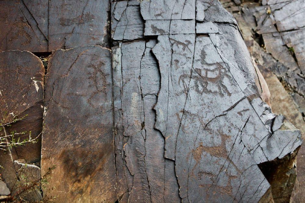 Ritzugen in schwarzem Stein. Verschieden Bilder von Tieren vmtl. Pferden sind zu sehen. Der Stein ist zersplittert.