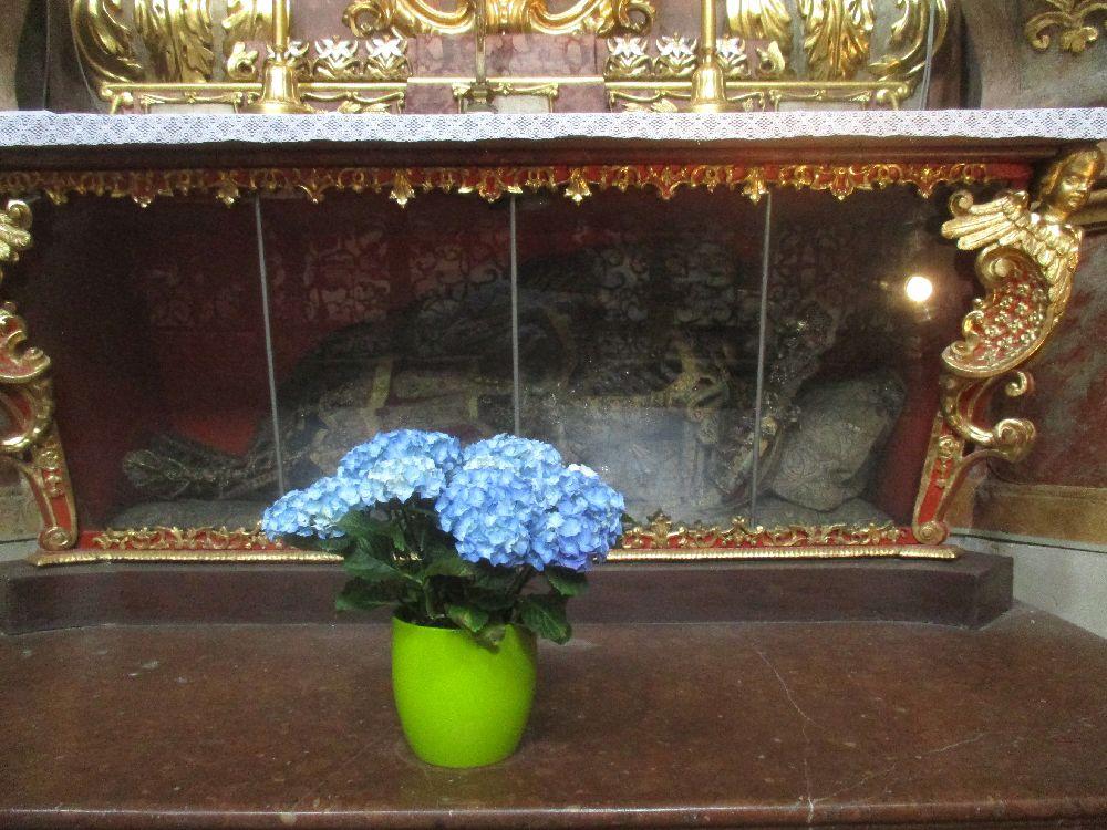 Ein Blumenstraus mit blaun Blumen steht vor einem gläsernen Sarkphag. Hier kigt kunstvoll drapiert in Skelett, das in in Juwlenbesetztes Kostüm eingpasst wurde