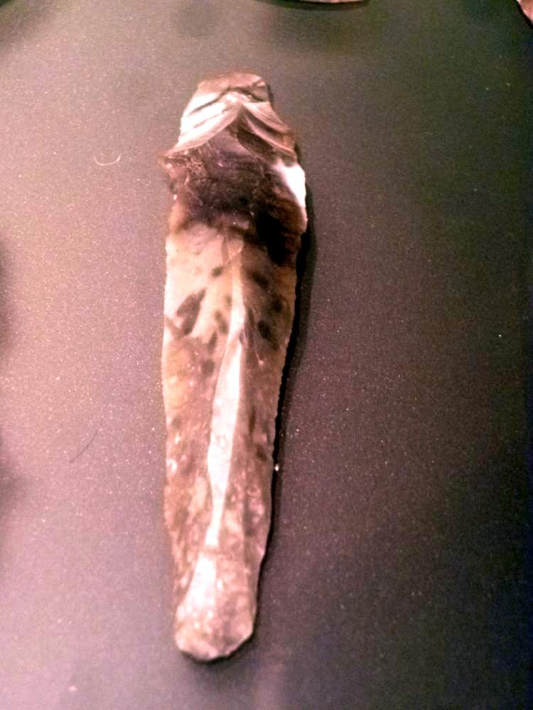 Ein Flintabschlag. Ein Länglicher Grauer Stein mit einign Einschlüssen. Er ist vo einem anderen Stück Abgebrochen worden