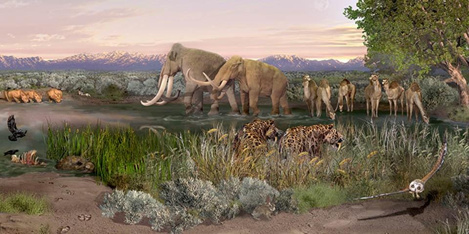 Eine Landschaft an einm Se. Hohes Gras, in weiter ferne Berge. Mammuts und Kamle werden von Säbelzahntiegern beobachtet.