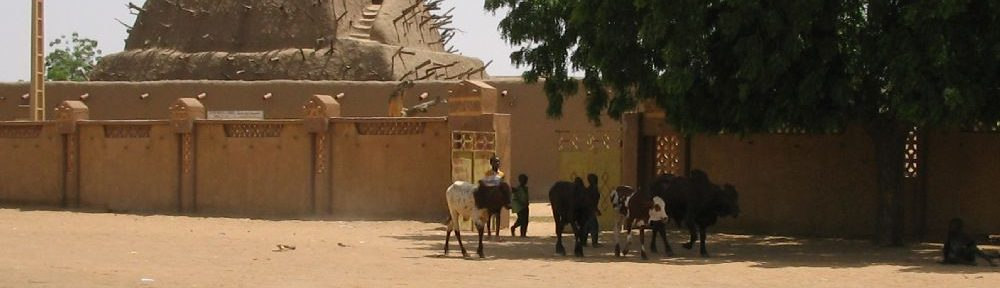 Eine Pyramide aus Lehm hinter einer Mauer. Im Vrdergrund treibt ein Junge Rinder über die Strasse.