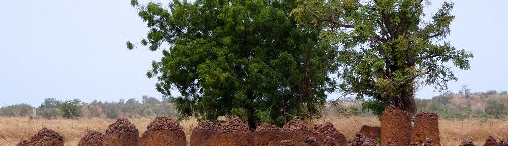 Ein großer Langer Steinkreis aus Zylindrisch geformten Steinen auf einer Savannenlandschaft.