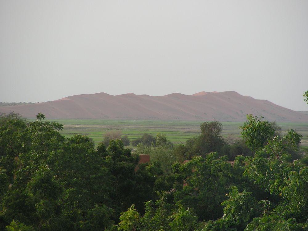Eine Grün bewachsene Gegend, mit vielen Felder. Im hintergrund ist eine Hohe Sanddüne zu sehen, die sich wie ein Berg durch die Landschaft zieht