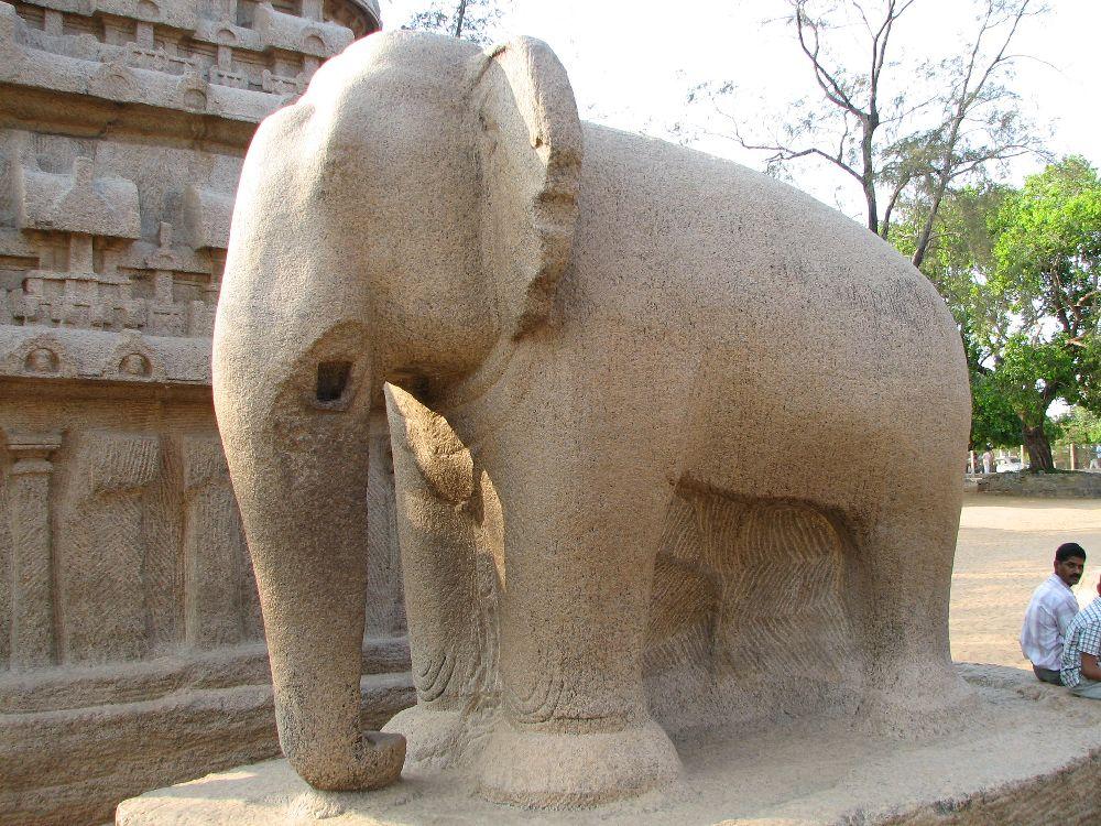 Eine unfertiege Elfantenskulptur. In Groben zügen ist der Dickhäuter schon zu erkennen. Die Ohren sind fein herausgearbeitet, der rest ist noch eher grob und unfertig. Die Stoßzähne des Elefanten fehlen.