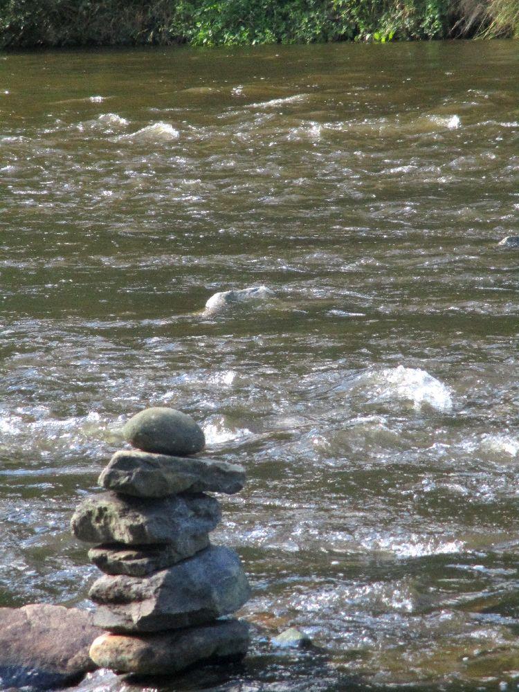 Ein Fluss mit viel Strömug fielst an einem Steinmännchen vorbei