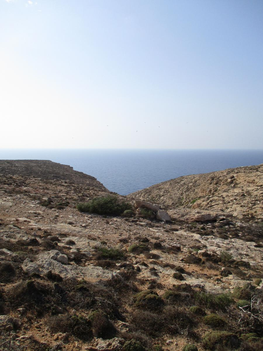 Wüste und Küste